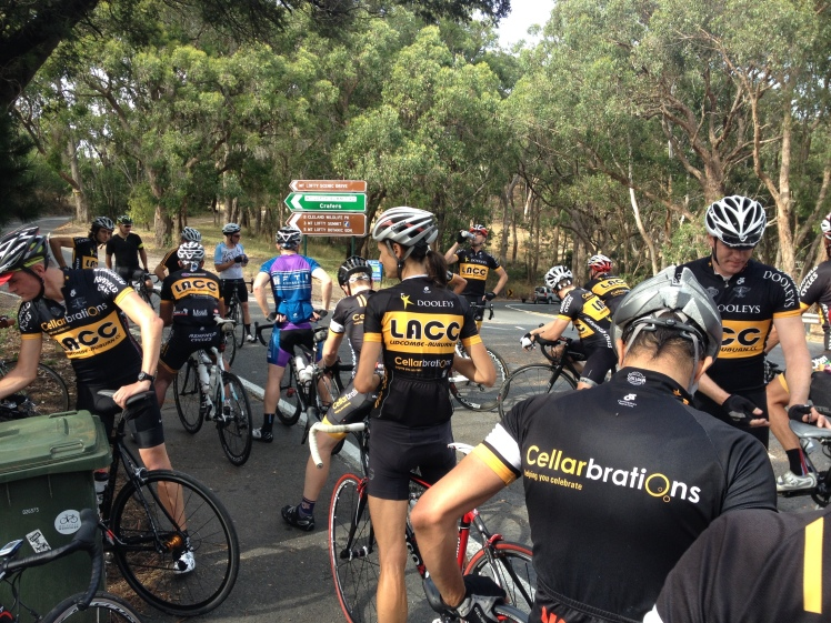 The road to Mt Lofty, packed with riders down for the TDU.