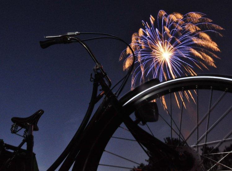 july-5th-2010-washington-park-fireworks
