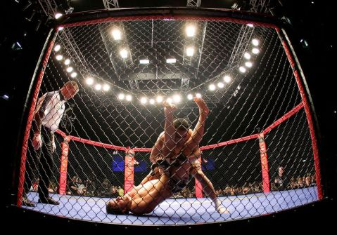 cage-fight