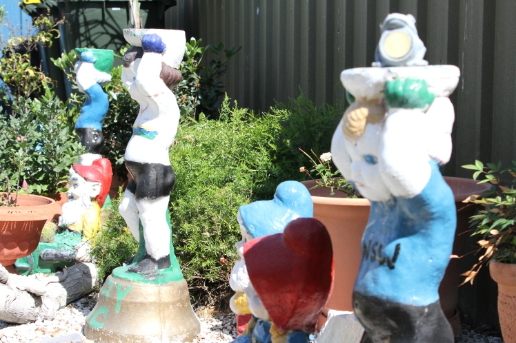 Sonny Clissold's back garden in Moree_featuring statues of Gary & Shane Sutton, and his son, John